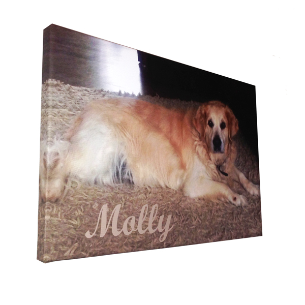 Unique gift idea London Essex personalised canvas print for pets