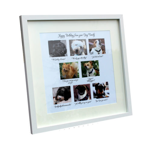 unique pet gift ideas London Essex personalised box framed poster dog walking gift